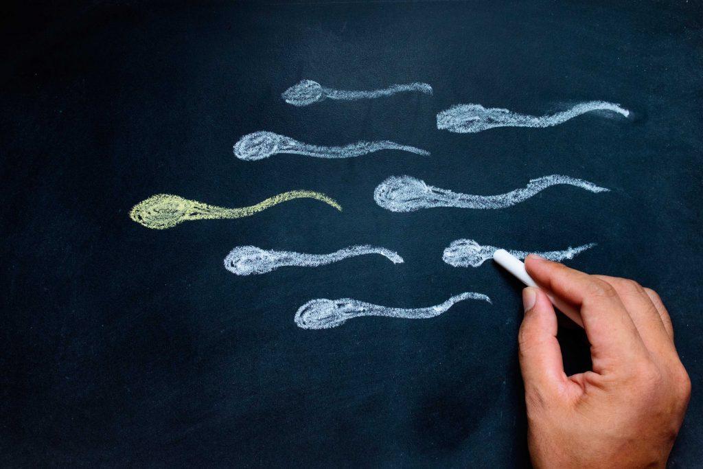 Banco de Semen, una opción para parejas y para ser madre soltera