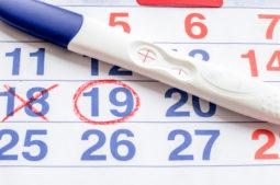 ¿Cuando es más favorable quedar embarazada?